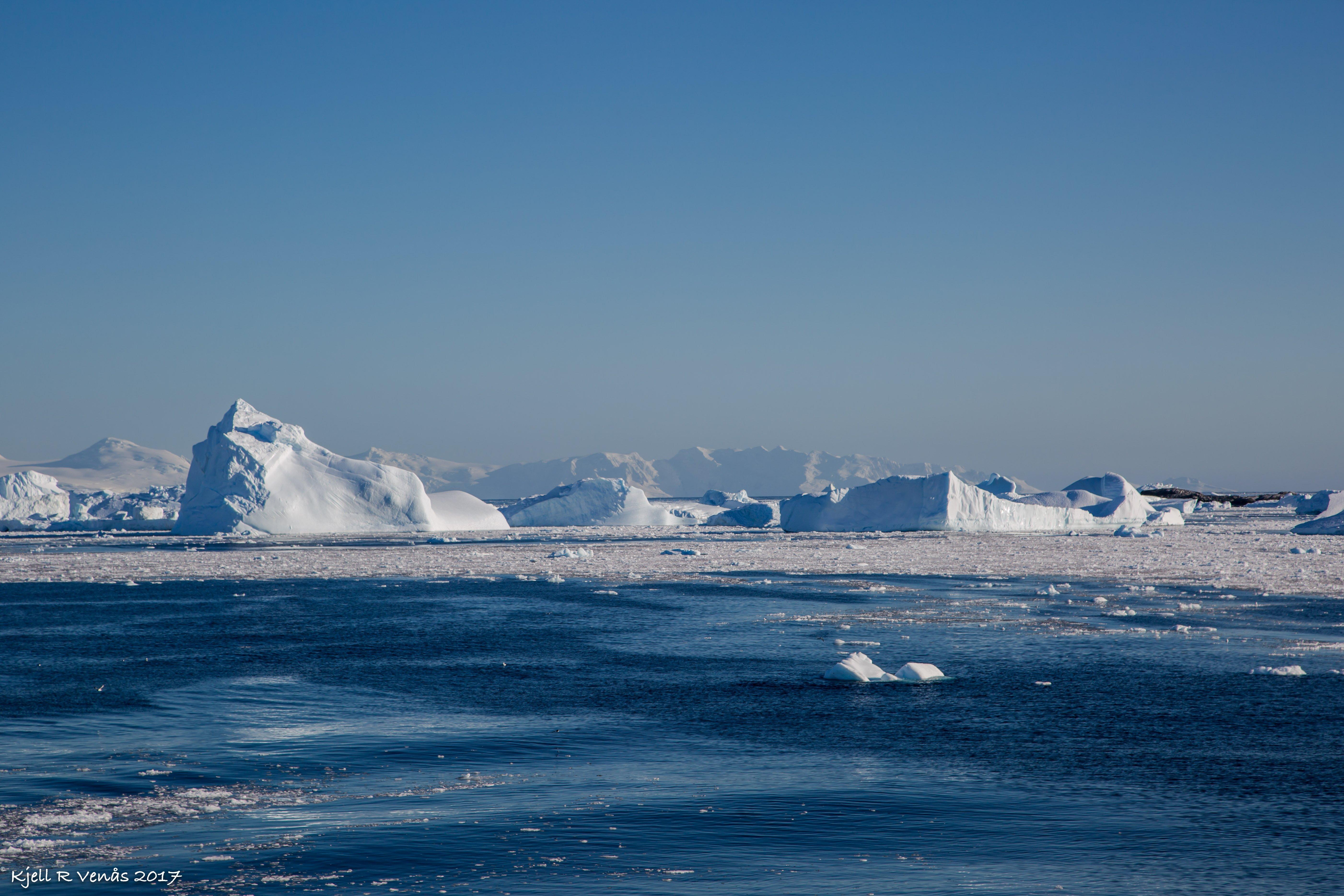 Antarctic icebergs qrill aqua.jpg