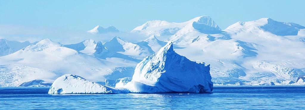 Antarctic ecosystem qrill aqua
