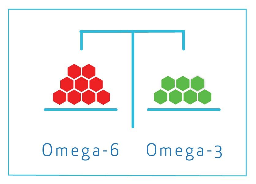 Omega balance with krill leading to good fish health.jpg