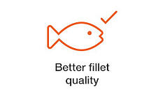 better-fillet-quality.jpg