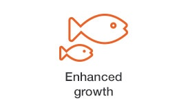 enhanced-growth.jpg