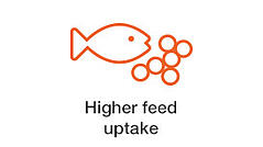 higher-feed-uptake.jpg