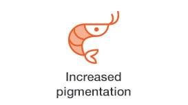increased-pigmentation.jpg