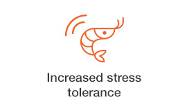increased-stress-tolerance.jpg