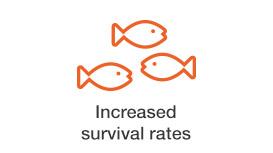 increased-survival-rates.jpg
