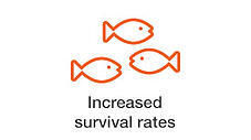 increased-survival-rates.jpg
