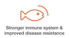 stronger-immune.jpg