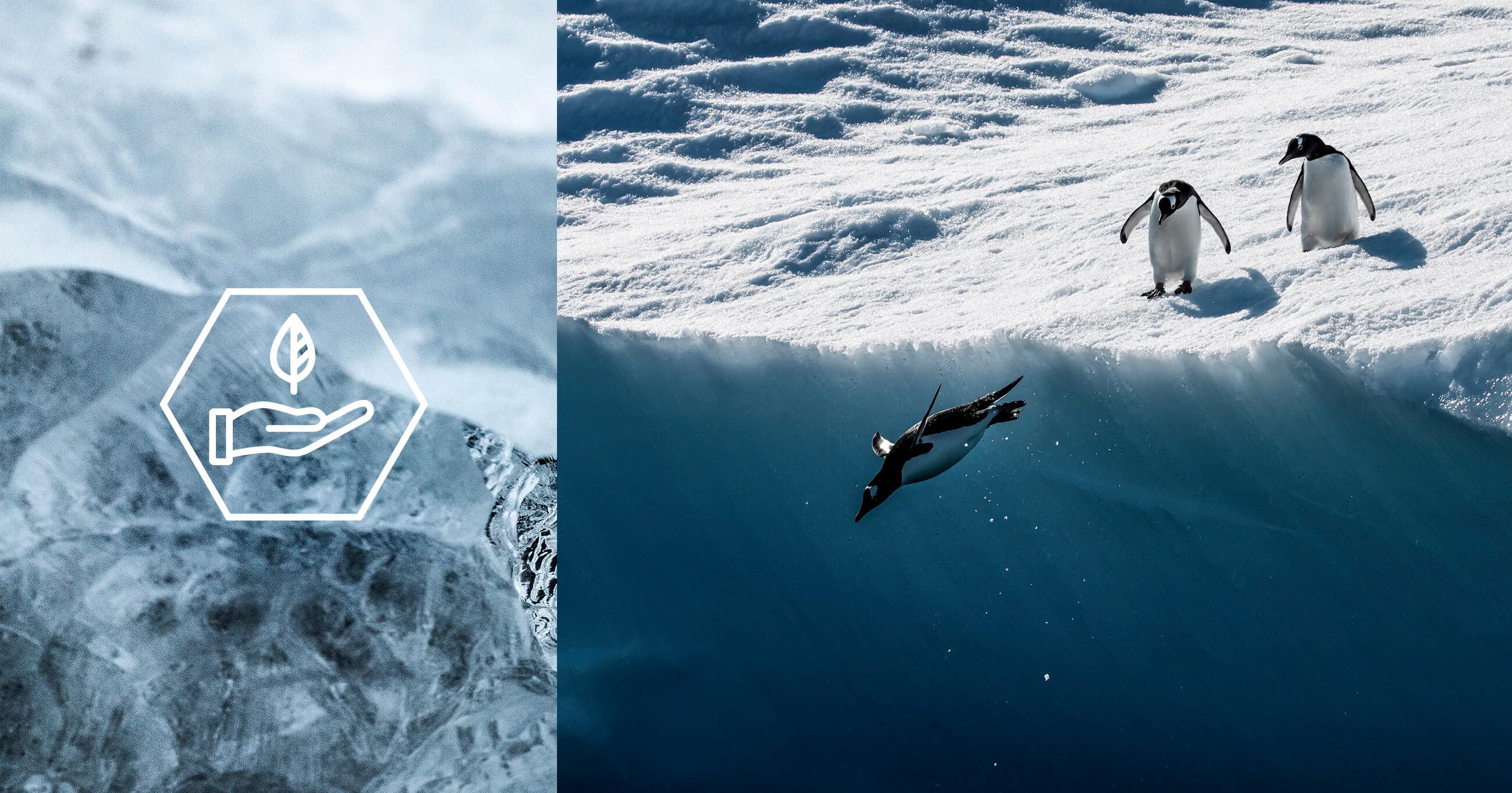 Qrill aqua front-sustainability-tp.jpg