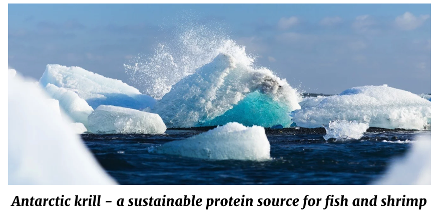 QRILL Aqua - Antarctic krill - a sustainable protein source