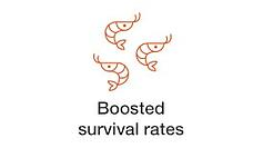 boosted-survival-rates.jpg