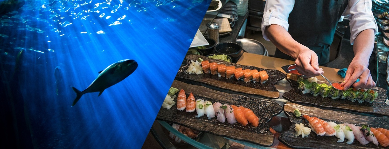 fish-benefits